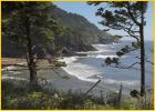 Heceta Head Shore